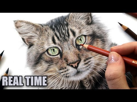 how-to-draw-cat-eyes-in-colored-pencil-|-real-time-tutorial