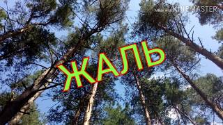 ЖАЛЬ___АНТИРЕСПЕКТ