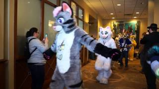 Motor City Furry Con - Fursuit Parade