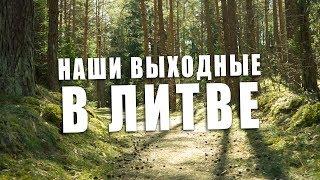 Никогда не садись на муравейник... Литва, гуляем по лесу
