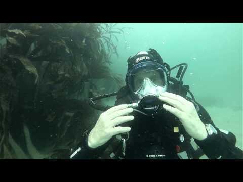 Ocean Reef Full Face Mask Review