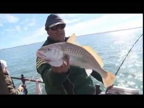 Entrevisiones - Pesca en Punta del Este / Fishing Uruguay