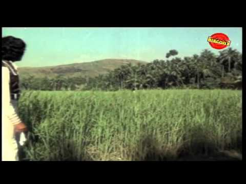 Mazha Peythu | Malayalam Movie Songs | Lajjaavathi (1979)