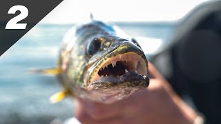 Ultra Light Fishing For BEHEMOTH Fish (Big Lake Bassin)