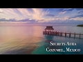 DJI Phantom 4 footage - Secrets Aura Resort Cozumel