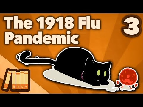1918 Flu Pandemic - Order More Coffins - Extra History - #3