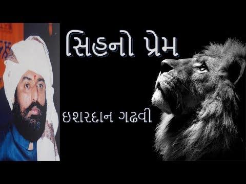 Lions Love  Ishardan Gadhvi  Lok Varta