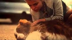 """TRYG Vakuutukset - Vakuutus TV mainos """"Koira"""""""