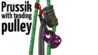Prusik with tending pulley | Arborist climbing techniques