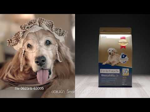 สมาร์ทฮาร์ท โกลด์ ฟิตแอนด์เฟิร์ม 7+ สำหรับสุนัขสูงอายุ ที่ต้องดูแลเป็นพิเศษ!!!