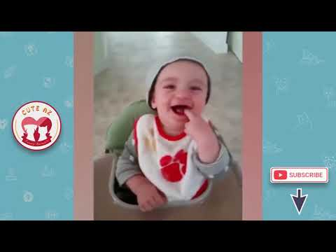 Funny Babies and Pet ! Fun and Fails ! Funniest Babies & Dogs Trouble Maker #1