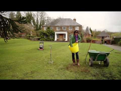 Spring lawn care – how to repair your turf