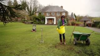 Spring lawn care - how to repair your turf