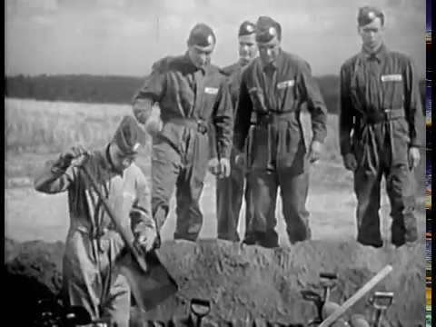 Parachute Battalion 1941 BUDDY EBSEN