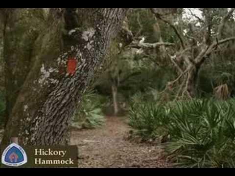 hickory hammock hickory hammock   youtube  rh   youtube
