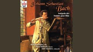 Sonate en sol mineur pour flûte & clavecin obligé, BWV 1020: Adagio