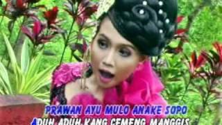 Banyuwangi Cemeng Manggis MP3