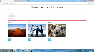 PHP: MySQL (PDO) How to edit image and data with php PDO?