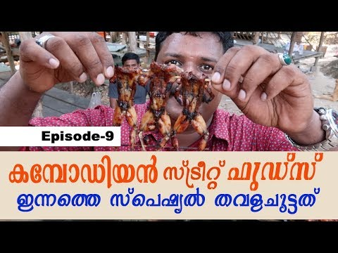 STREET FOODS IN CAMBODIA, VILLAGE FOOD & FROG BBQ | Cambodia travel videos | Harees Ameer Ali