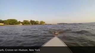 Paddle Boarding On The Hudson River At Senasqua Park, Croton-on-hudson, New York
