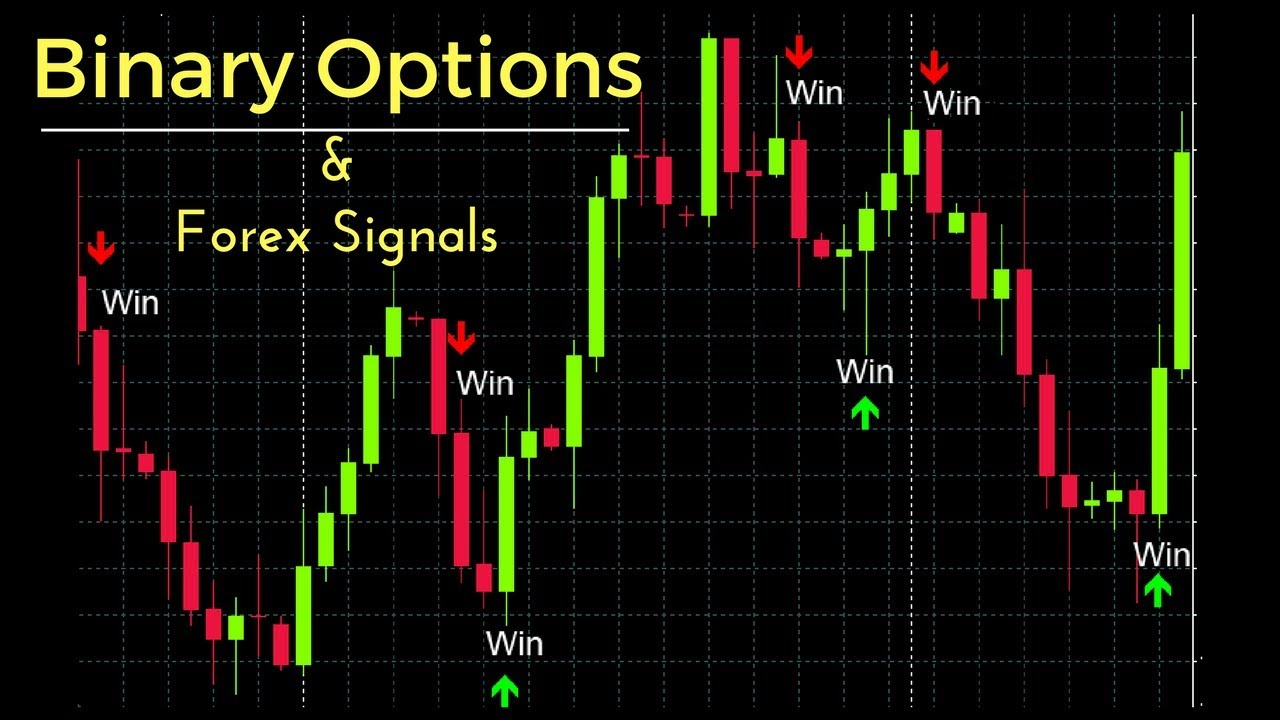 Top 5 binary options