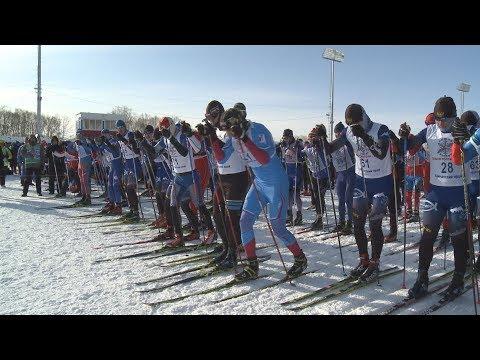 «Лыжня России - 2019» на Камчатке