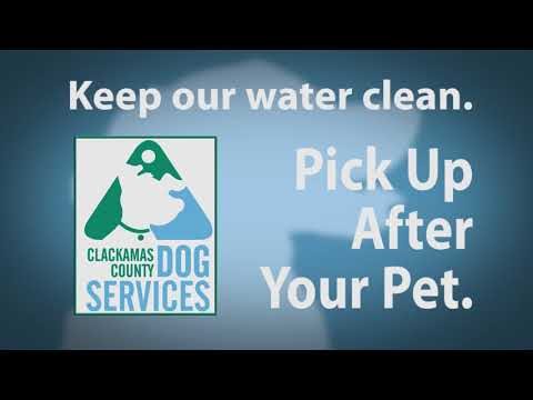 Adoptable Dogs in Clackamas County: Sept. 28th-Oct.4th