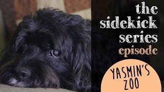 Episode 7: Yasmin's Zoo