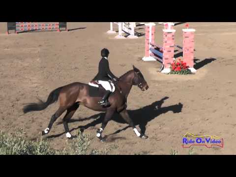 253S Barbara Flynn on P K  Cooper Training Horse Show Jumping Galway Downs April 2016