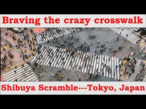 shibuya-scramble-crossing-in-tokyo,-japan-along-with-lunch-ejecting-elevator-ride.