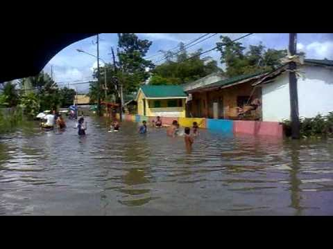 Apitong swimming pool opening youtube for Swimming pool in tacloban city