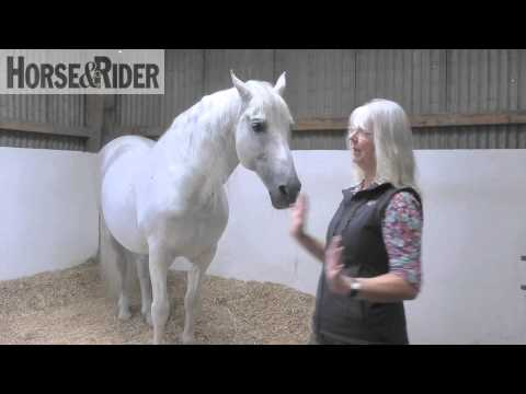 Jenny Rolfe  Tune Into your Horse Part 1  HorseandRider UK