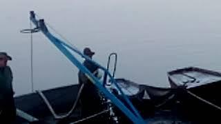 Vylov rybnika Regent