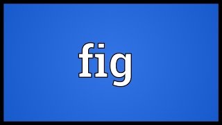 Fig Meaning