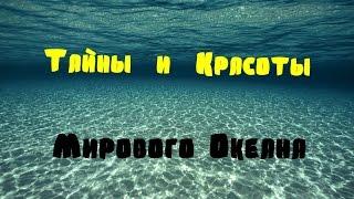 видео Мировой океан. Морские волны.
