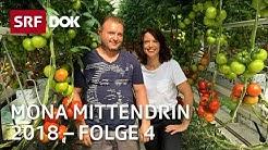 Mona Vetsch als Erntehelferin | Mona mittendrin 2018 | Doku | SRF DOK