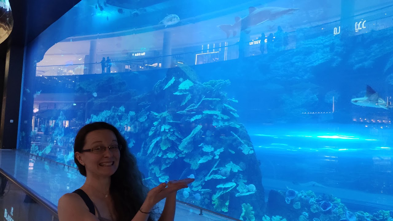 The Dubai Mall Aquarium (11 December 2019) - YouTube