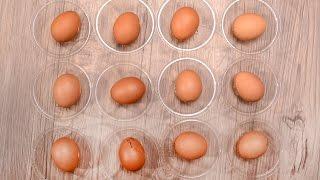 Sous Vide Egg 수비드 계란 • COOKER …
