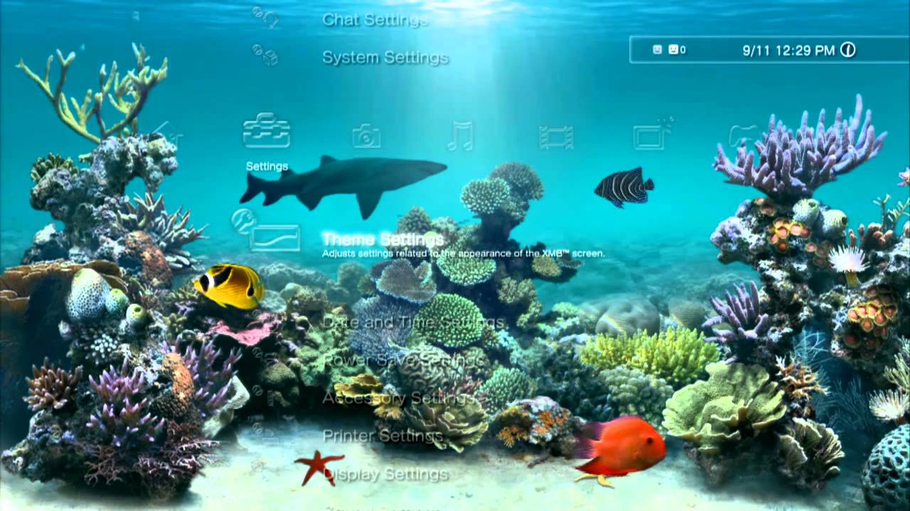 Aquarium dynamic ps3 theme youtube for Moving fish screensaver