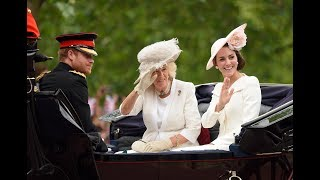 Why Prince Harry Doesn't Ride on Horseback During Trooping the Colour ?