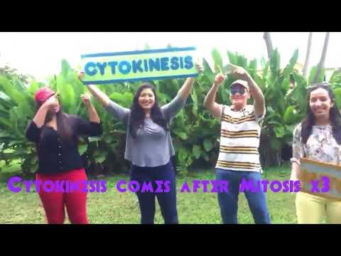 "Biology Group #1 ""Mitosis & Cytokinesis"""