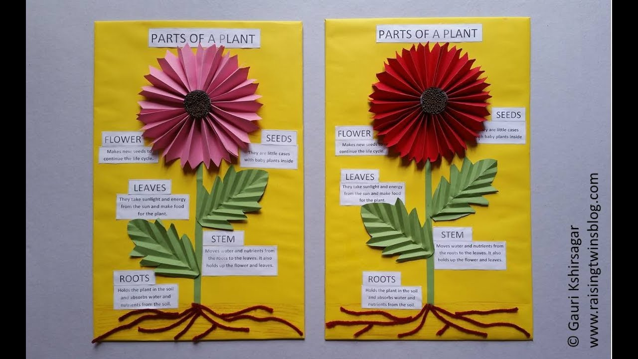 Easy-to-make charts and project ideas on the theme of Plants and Flowers on plant cell activity, phases of the moon kindergarten, plant life cycle activity, plant ideas and activities resources, simple machines kindergarten, plant classification key, plant activities for preschool, plant activities for toddlers, plant activities daycare, plant activities social studies,