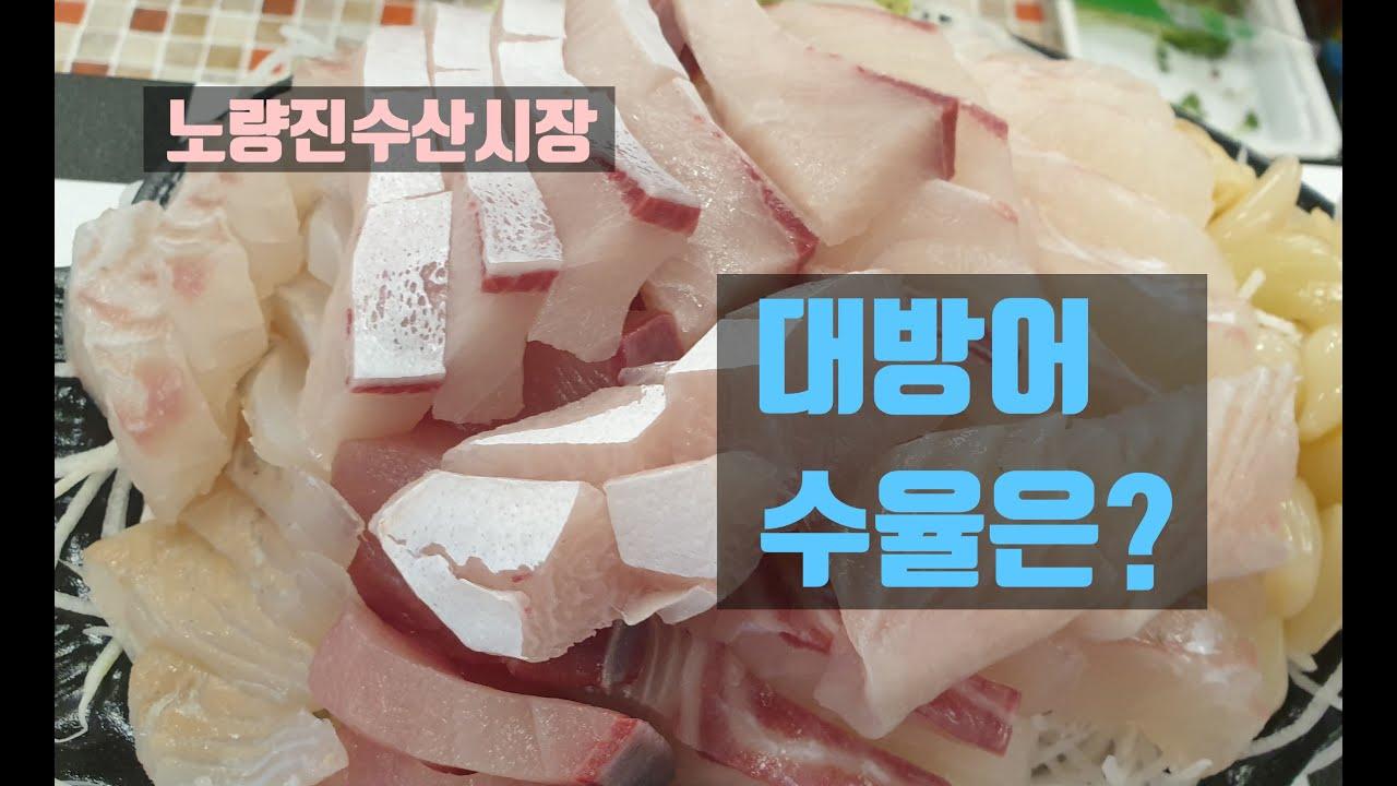 노량진수산시장 대방어  수율 전갱이손질 이레상회