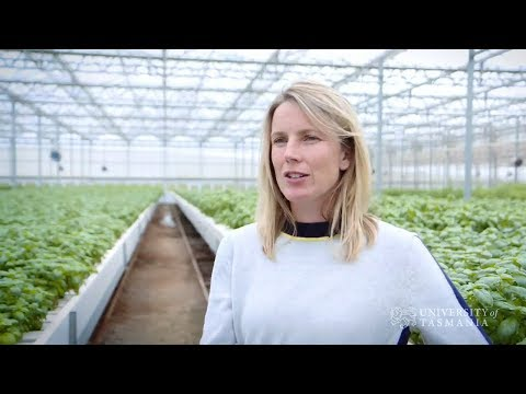 A land of opportunity – agricultural careers in the 21st century