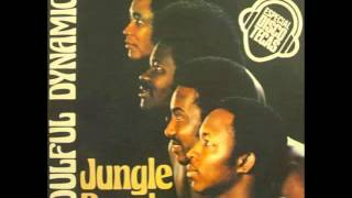 SOULFUL DYNAMICS  Jungle people