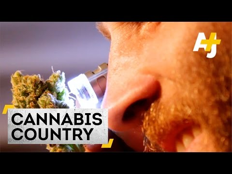 Cannabis Country – The Biggest Weed Grower In Uruguay | AJ+ Docs