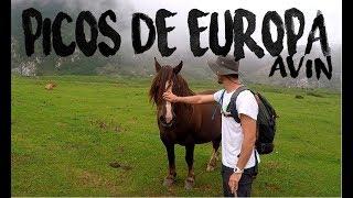 AVIN, Asturias - Viaje a los Picos de Europa - 2018