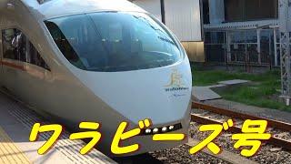 小田急「ワラビーズ号」特急ロマンスカーVSE(50000形)
