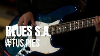 Blues S.A. -