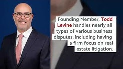 Todd Levine Is Recognized Among Others at Kluger Kaplan by The Best Lawyers in America